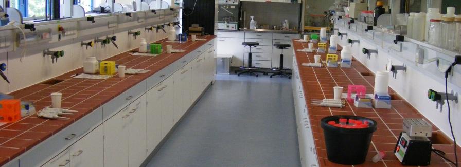 Molekularbiologisches Labor mit Arbeitsbänken und Equipment