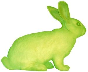 Alba_green bunny
